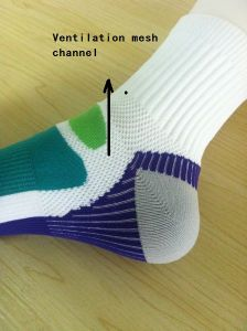 Sports Socks1 pictures & photos
