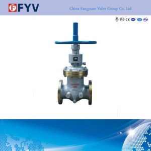 API Wcb Cast Steel Gate Valve Manual Operated pictures & photos