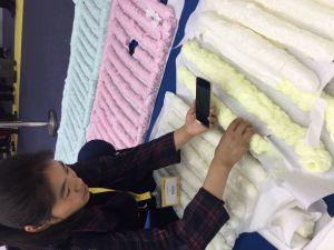 Ikebana Use Chemical Polyurethane Adhesive pictures & photos