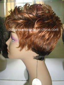 100% Human Hair Full Lace Wigs pictures & photos