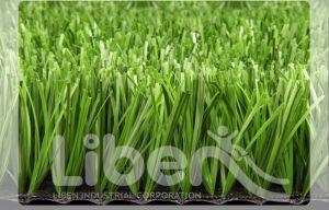 Football Field Carpet, Grass Carpet (CP005) pictures & photos