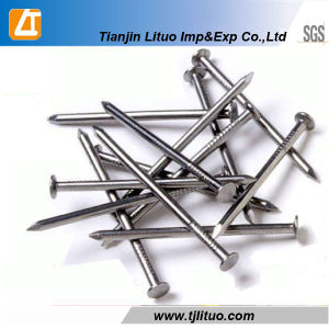 High Quality Polished Common Wire Nails pictures & photos