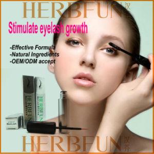 Supply Herbfun Maxlash Eyelash Growth Liquid