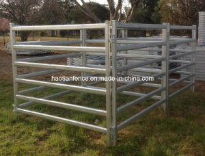 Cattle Yard Panel pictures & photos