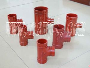 Wpt Brand Equal Tee with UL&FM Certificate Malleable Iron Fittings
