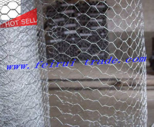Nigeria Market Chicken Wire/Poultry Wire Netting Roll/Bird Cage Chicken Wire pictures & photos