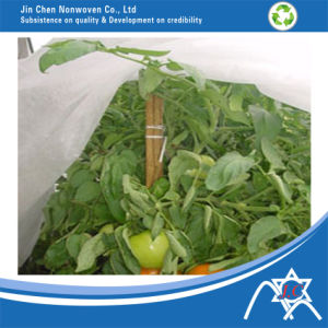 PP Nonwoven Fabric for Agriculture Cover pictures & photos