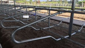 Hot DIP Galvanised Cow Free Stall