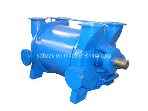 2be1405 Single-Stage Water Ring Vacuum Bare Pump (price)