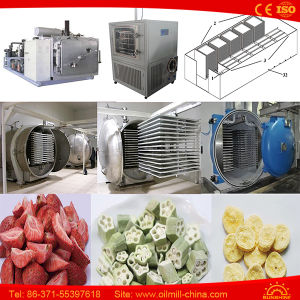 Food Freeze Dryer Fruit Vegetable Coffee Nutrient Vacuum Lyophilizer Price pictures & photos