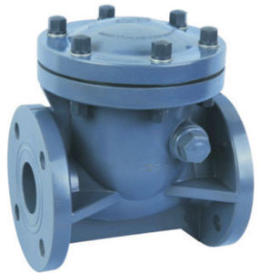UPVC Swing Type Check Valve with pictures & photos