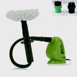 Steam Cleaner, Steam Winder Cleaner pictures & photos