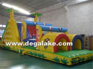 Inflatable Bouncy House Castle for Amusement Park Inflatable Jumpy House pictures & photos