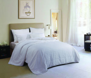 Different Size Hotel Hollow Fiber Quilting Comforter pictures & photos