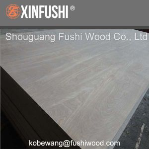 Birch Plywood for Europe Market pictures & photos