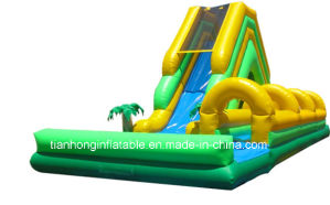 Strong Inflatable Games Cheap Giant Inflatable Slides/Inflatable Water Slide for Adult pictures & photos