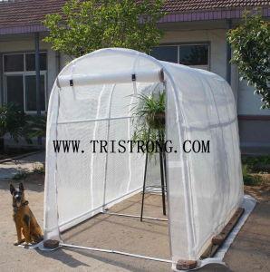 Flower House, Hothouse, Garden Tool, Garden Shed, Greenhouse (TSU-162G) pictures & photos