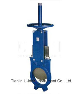 Replaceable Seat Knife Gate Valve pictures & photos