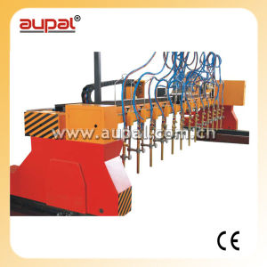 Multi-Head Strip Type CNC Plasma and Flame Cutting Machine for Metal (AUPAL-3000-6000)