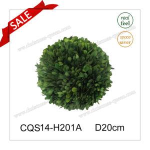 D20cm Fresh Leaves Boxwood Decorative Party Decoration Flower pictures & photos