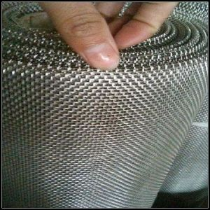 European Filter Element Material Ss Wire Net (L-55) pictures & photos