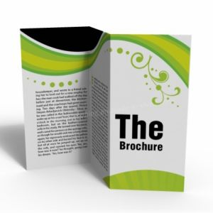 Manuals/ Book/ Brochure with Full Color Printing pictures & photos