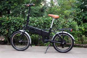 Ce ISO9001 Certificate Foldable Electric Bike Ebike pictures & photos