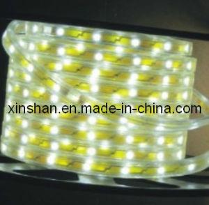 CE IP65 LED Strip (SX-5050Y30R-W220)
