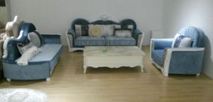 Blue Color, Simple New Classic Sofa, Fabric Sofa (F530) pictures & photos