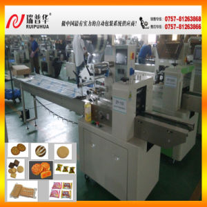 Zp100 Pillow Type Packer for Biscuits/Cookies/ Candy pictures & photos