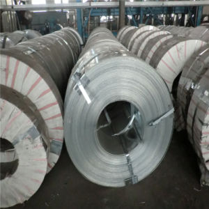 Galvanized Steel Strip for The Automotive Industry pictures & photos
