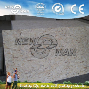 Best Price OSB for Russia Market ((NOSB-0058) pictures & photos