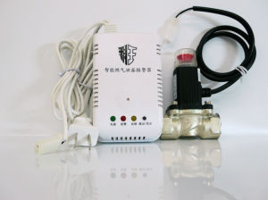 Ce Standard Home Gas Leakage Detector with Solenoid Valve Dn20 for Kitchen Security