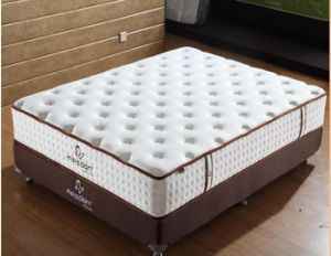 Pocket Spring/Model Design Mattress pictures & photos