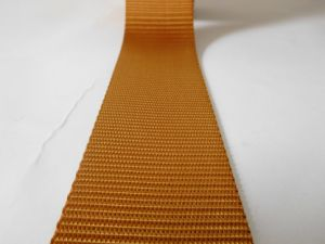 50mm Brown Polyester Webbing for Car Safety Belt pictures & photos