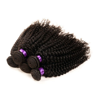 Cheap 100% Malaysian Virgin Hair Kinky Curly pictures & photos