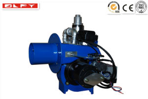 LNG LPG Gas Burner in Boilers pictures & photos