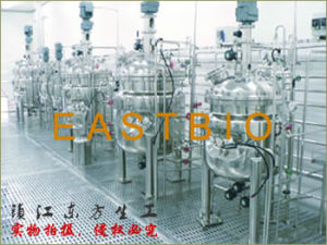 Eastbio® Gj Series Large Size Production Scale Fermenter pictures & photos