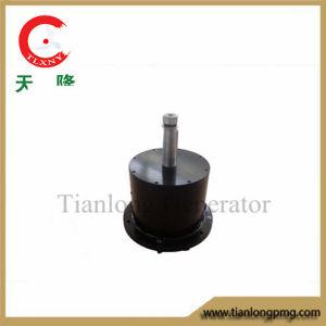 Ffl-1kw/200rpm/DC56V Permanent Magnet Alternator (PMG/PMA/Hydro)