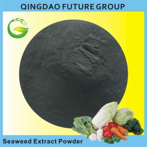 Bio Soluble Seaweed Extract Powder, Alga Powder Fertilizer pictures & photos