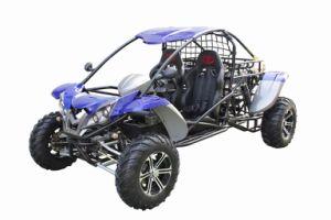 High Quality 1100CC 4x4 Buggy (RL-1100)
