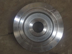 Forging Gear/Forged Gear pictures & photos