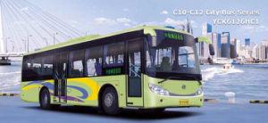 C1-C2 City Bus (YCK6126HC1)