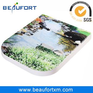Beautiful Printing Duroplast Toilet Seat
