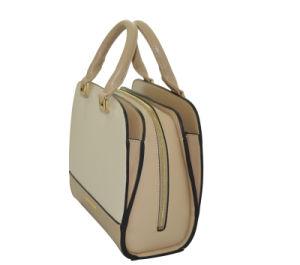 Hot Sell Ladies Tote Handbags (263B)