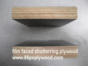 Eucalyptus Hardwood Plywood for Construction Shuttering Plywood