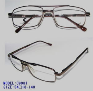 Metallic Optical Frames C9981