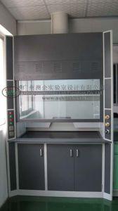 Customized Full Steel Fume Hood (AUBI-FH-0246)