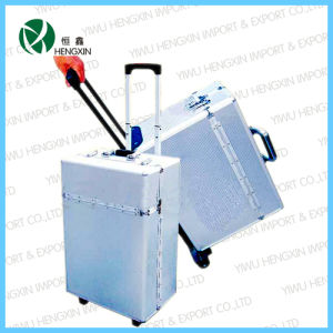 ABS Aluminum Tool Trolley Flight Case with Wheels (HX-PT008) pictures & photos