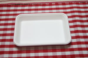 Biodegradable Disposable Food Tray (T023)
